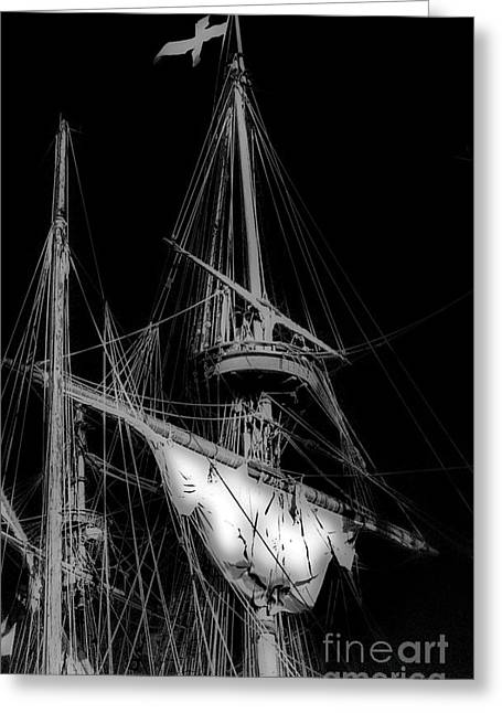 Crows Nest Greeting Card by Skip Willits