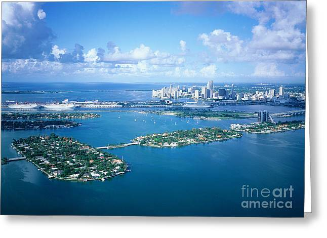 Cruise Boats Quay At Back, Miami Greeting Card by Adam Sylvester