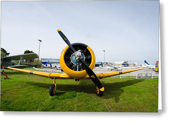 North American T-6 Texan Greeting Card by Pablo Lopez