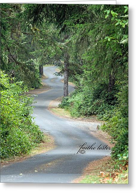 Curves Into Leadbetter Point State Park II Greeting Card