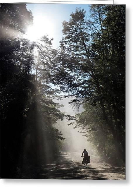 Cyclist On Dusty Road An Early Morning Greeting Card by Birgit Ryningen