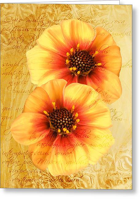 Greeting Card featuring the photograph Dahlias by Helene U Taylor