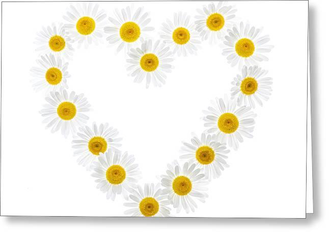 Daisy Heart Greeting Card by Elena Elisseeva