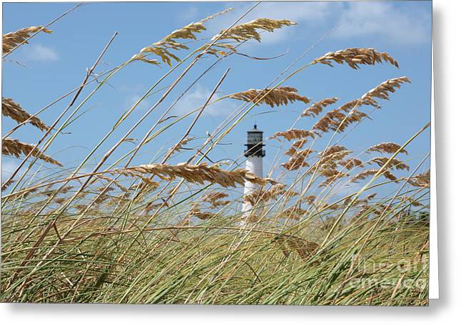 Day At The Beach Greeting Card by Carol Groenen