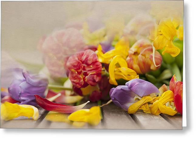 Dead Tulips Greeting Card by Svetlana Sewell