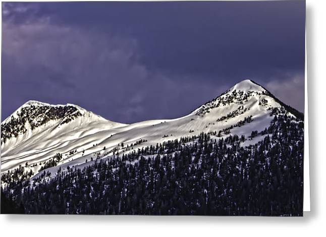 Deer Mountain C009 Greeting Card