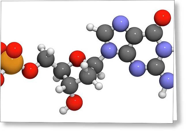 Deoxyguanosine Monophosphate Molecule Greeting Card by Molekuul