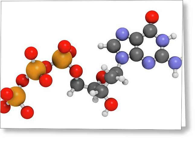 Deoxyguanosine Triphosphate Molecule Greeting Card by Molekuul