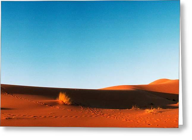 Desert At Sunrise, Sahara Desert Greeting Card by Panoramic Images