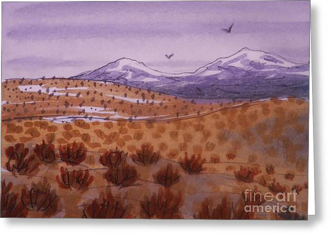Desert Contrasts Greeting Card