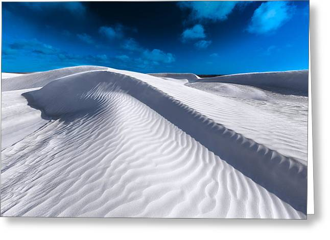 Desert Sands Greeting Card by Julian Cook