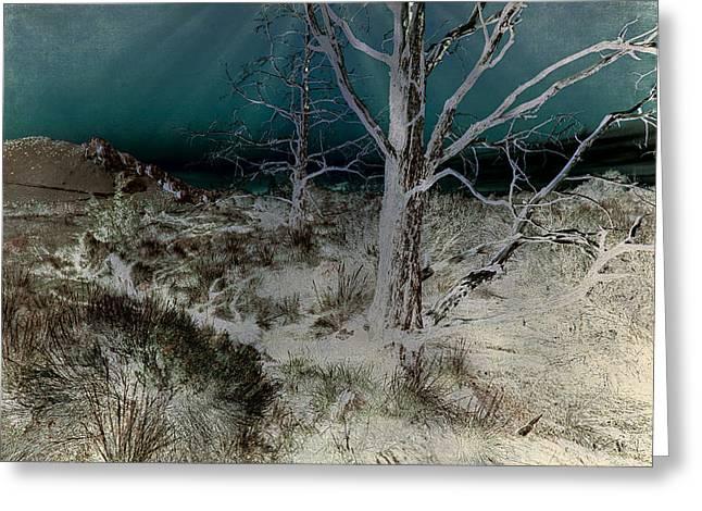 Desolation Greeting Card by Bonnie Bruno