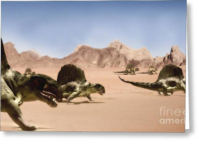 Dimetrodons, Artwork Greeting Card by Christian Darkin