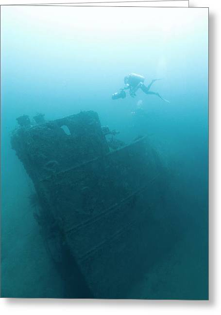 Diver At 'northern Light' Shipwreck Greeting Card by Noaa