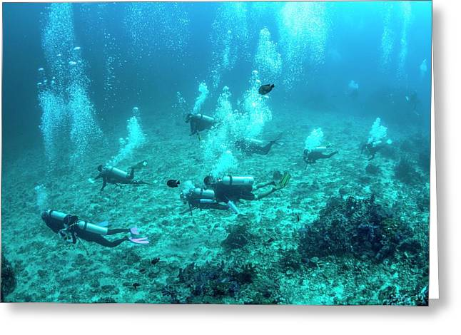Divers Over A Coral Reef Greeting Card by Georgette Douwma