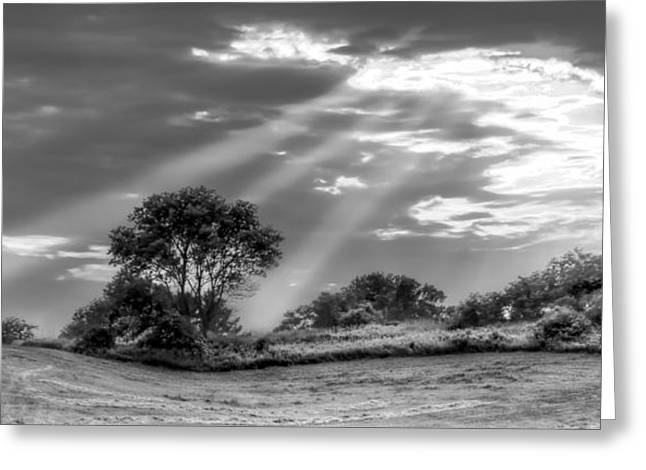Divine Light Greeting Card by Anna-Lee Cappaert