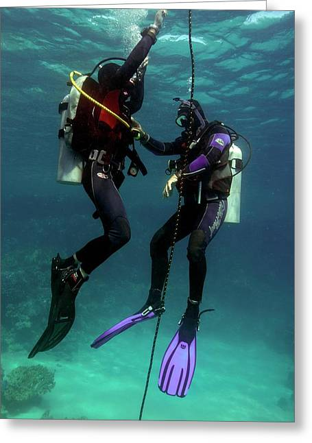 Diving Student And Instructor Greeting Card by Louise Murray