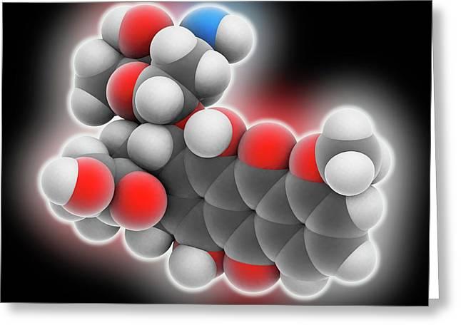 Doxorubicin Drug Molecule Greeting Card by Laguna Design