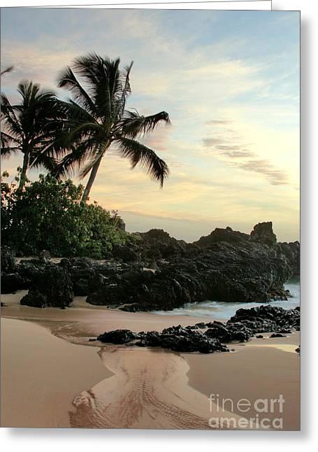 Edge Of The Sea Greeting Card by Sharon Mau