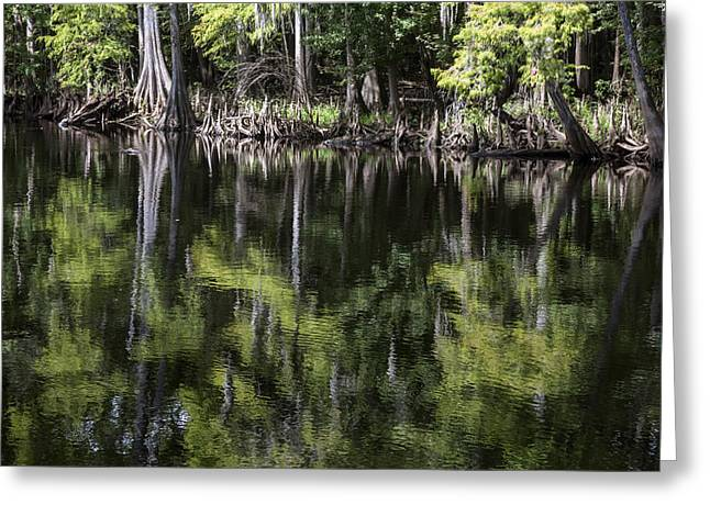 Emerald Reflections Greeting Card