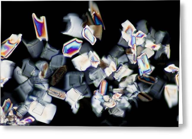 Energy Drink (light Micrograph) Greeting Card