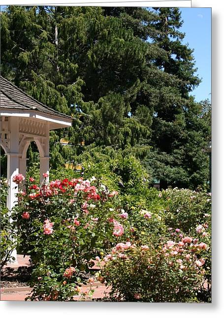 Greeting Card featuring the photograph English Garden by Cynthia Marcopulos