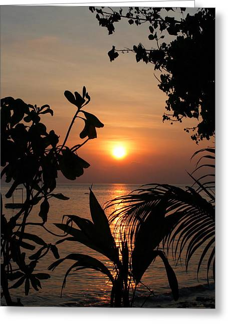 Evening Sun Greeting Card