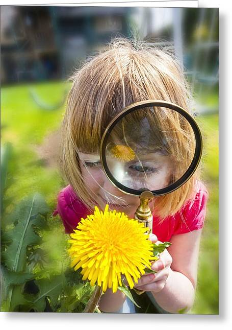 Examining Flower With Magnifying Glass Greeting Card by Science Photo Library