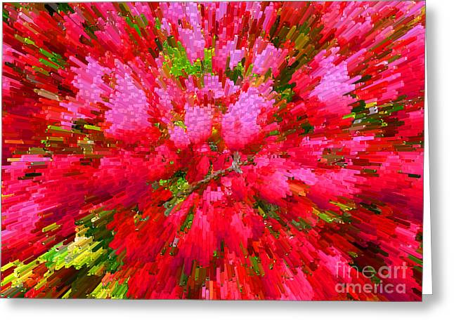 Explosion Of Spring Greeting Card by Alys Caviness-Gober