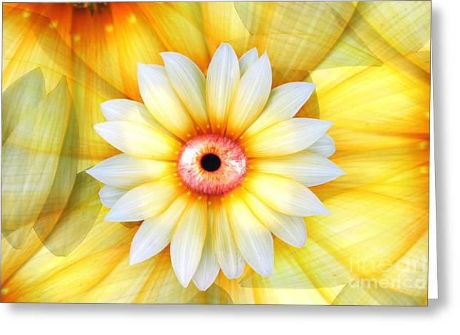Eye Of Beauty Greeting Card by Jorgo Photography - Wall Art Gallery