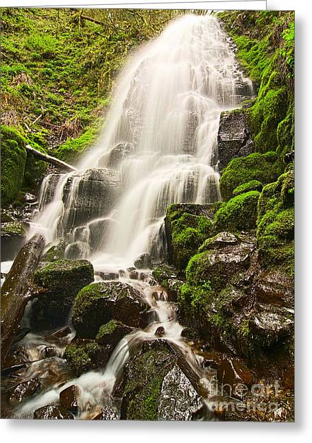 Fairy Falls In The Columbia River Gorge Area Of Oregon Greeting Card by Jamie Pham