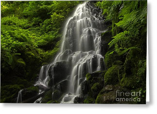 Fairy Falls Greeting Card by Tim Moore