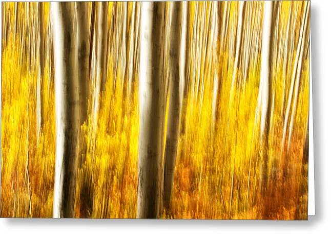 Greeting Card featuring the photograph Fall Abstract by Ronda Kimbrow