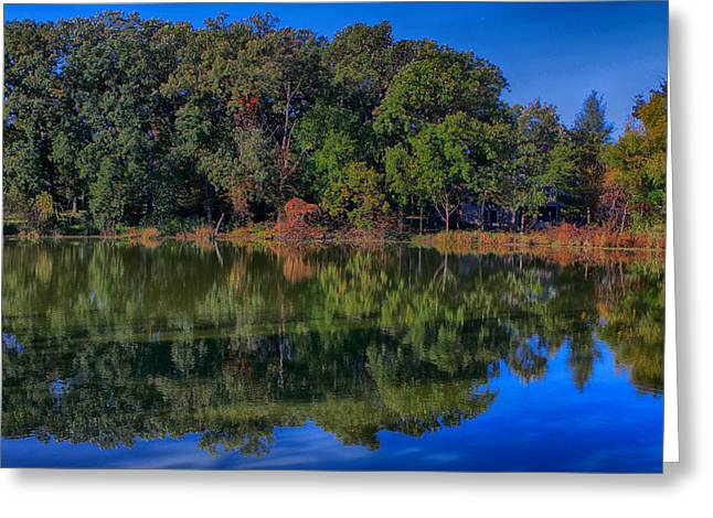 Fall Colors Greeting Card by Jerome Lynch