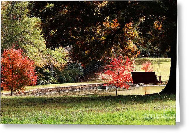 Fall Colors Greeting Card by Jinx Farmer