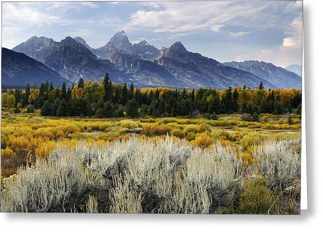 Fall In The Tetons Greeting Card by Eric Foltz
