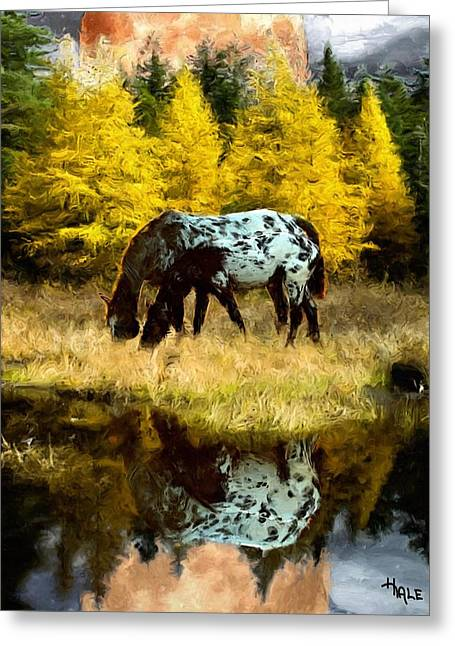 Fall Reflections Greeting Card by Roger D Hale