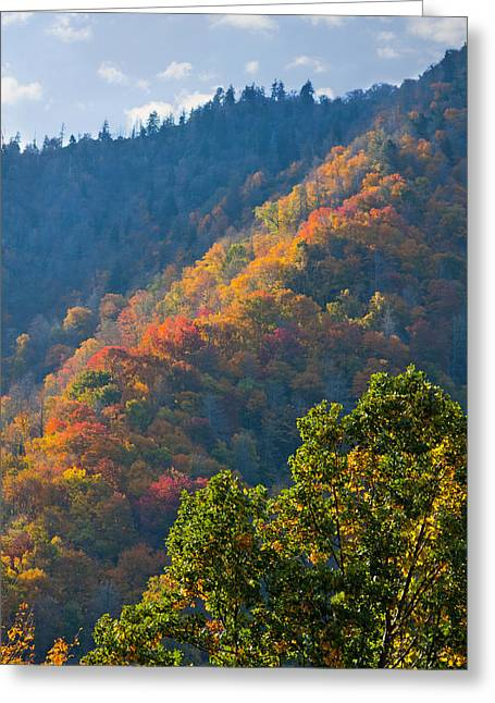 Fall Smoky Mountains Greeting Card