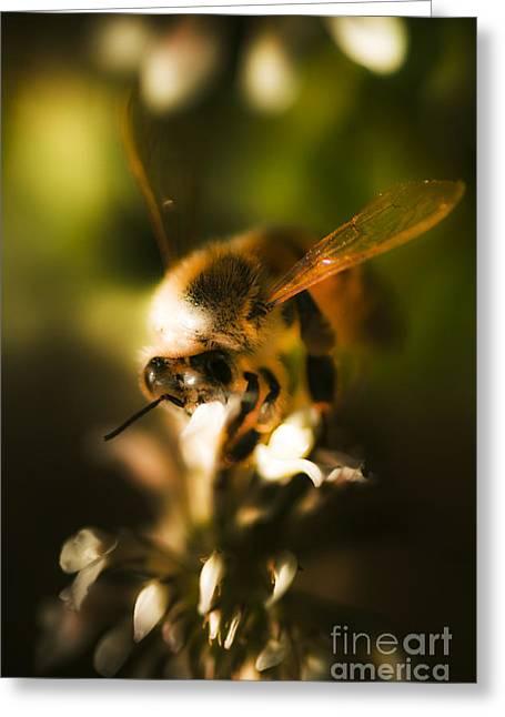 Fauna And Flora Meet Greeting Card