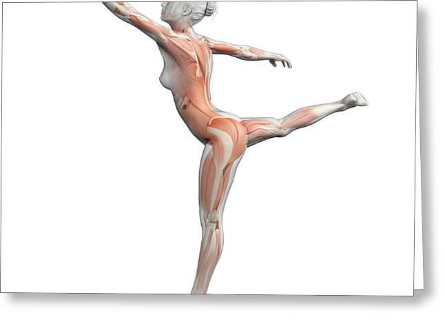 Female Dancer Greeting Card by Sebastian Kaulitzki