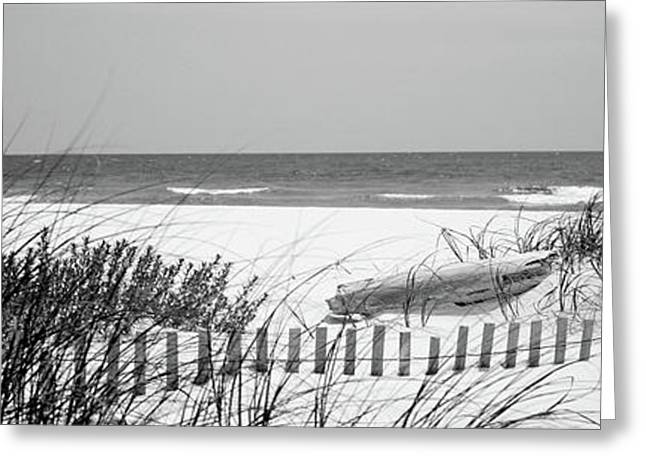 Fence On The Beach, Bon Secour National Greeting Card