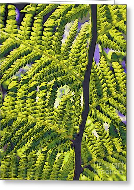 Fern Greeting Card