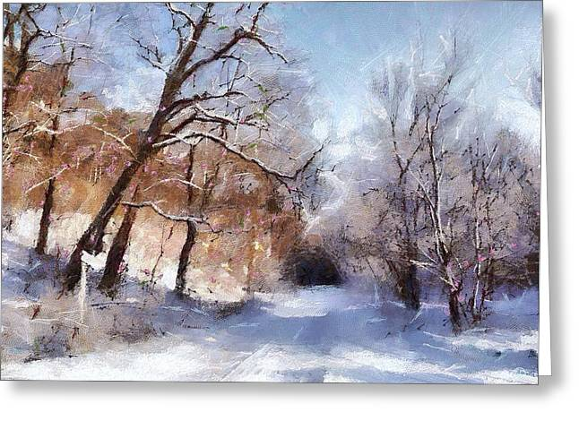 First Snowy Day Greeting Card