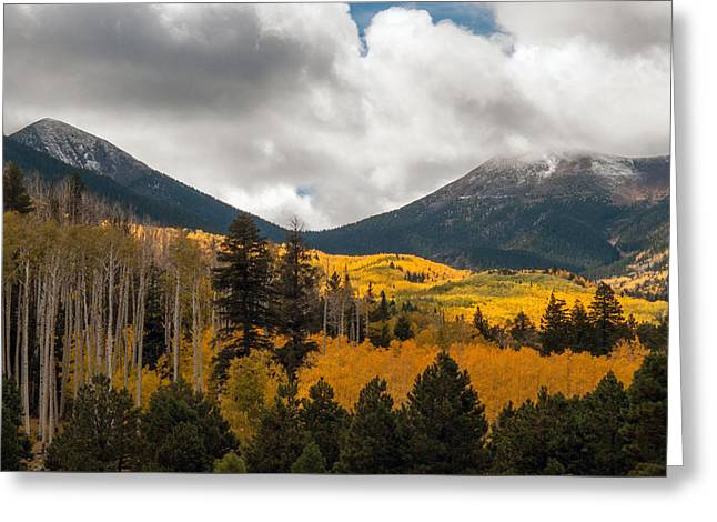 Flagstaff Fall Color Greeting Card