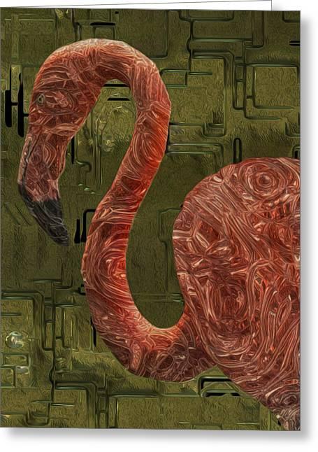 Flamingo Greeting Card by Jack Zulli