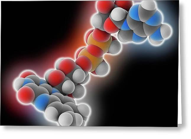 Flavin Adenine Dinucleotide Molecule Greeting Card by Laguna Design