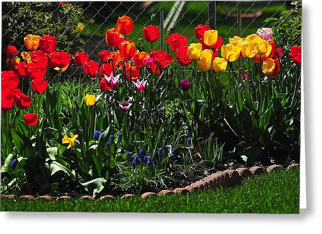 Flower Garden Greeting Card by Frozen in Time Fine Art Photography