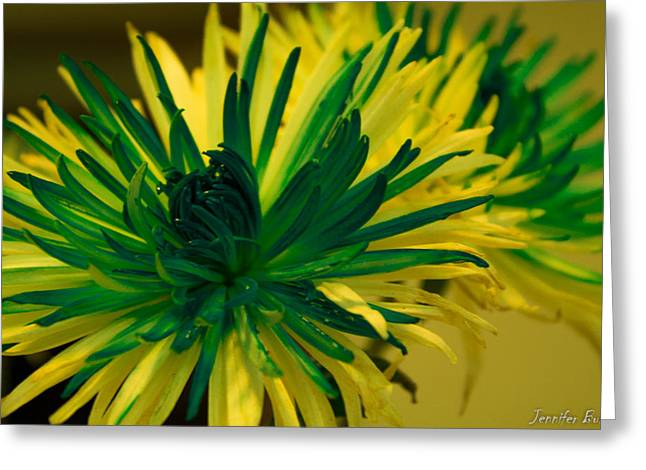 Flower Greeting Card by Jennifer Burley