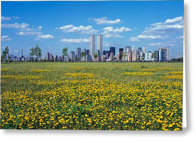 Flowers In A Park With Buildings Greeting Card
