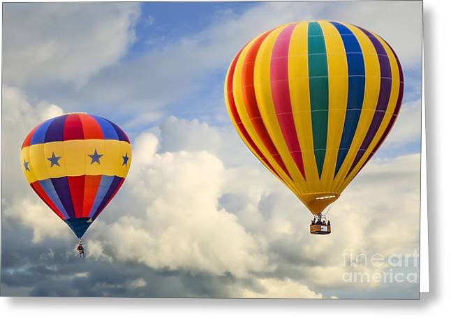 Flying High Greeting Card by Brenda Giasson